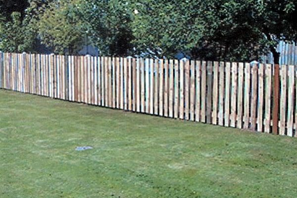 Domestic Fencing and Gate